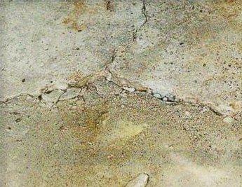 Под действием различных факторов бетонное покрытие повреждается и теряет свои свойства