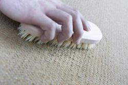 Чистка ковров в домашних условиях очень простое дело, если знать, как это делать и какие средства применять
