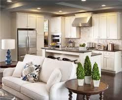 Совмещенная гостиная: современный дизайн